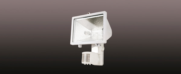 Garage security light