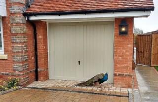 GRP-Garage-Door