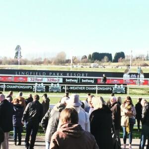 Lingfield Races