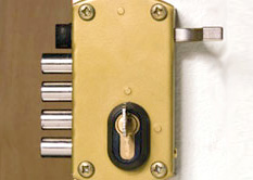 Side hinge garage door lock
